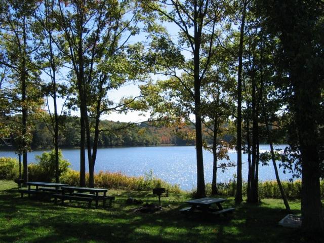 picnic area beside a lake
