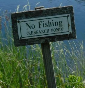 HUYCK-PRES-LIN-POND-NO-FISHING-CROP-CORRECTED-DSCN8329